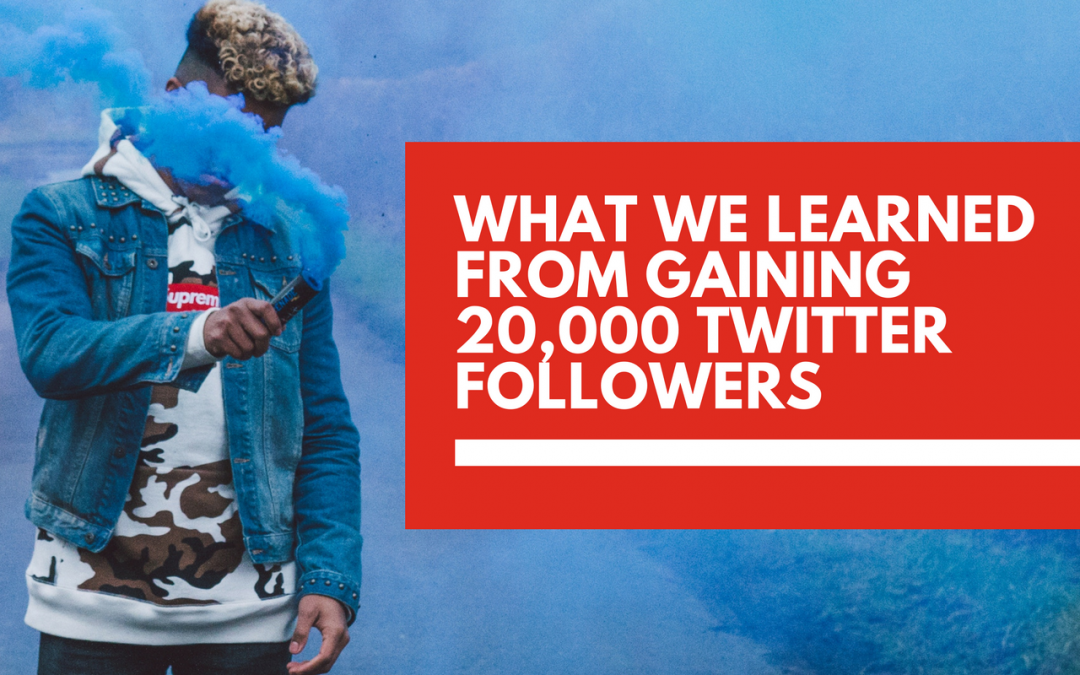 Here's what we learned from growing to 20,000 Twitter followers in less than a year