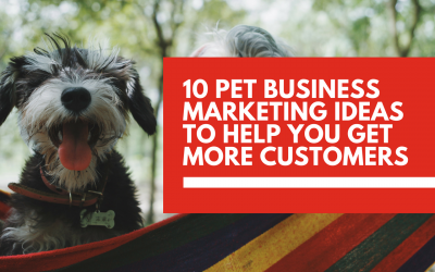 Market your pet business 🐶 online with these digital marketing techniques