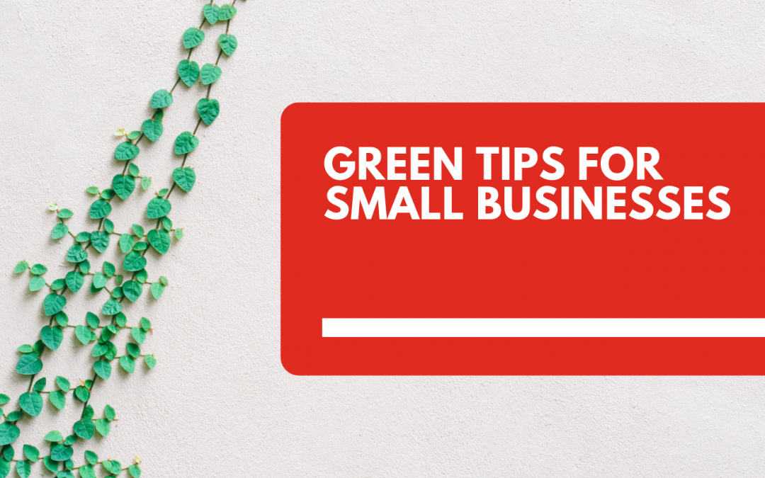 17 Green Tips for Small Businesses