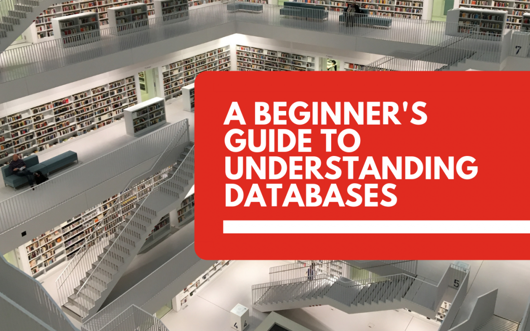 A Beginner's Guide to Understanding Databases